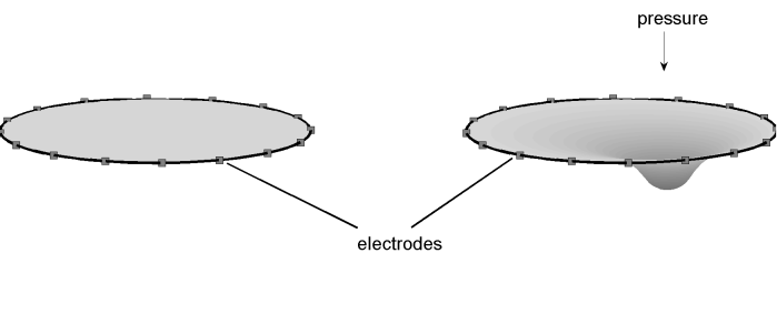 domain_electrode.png